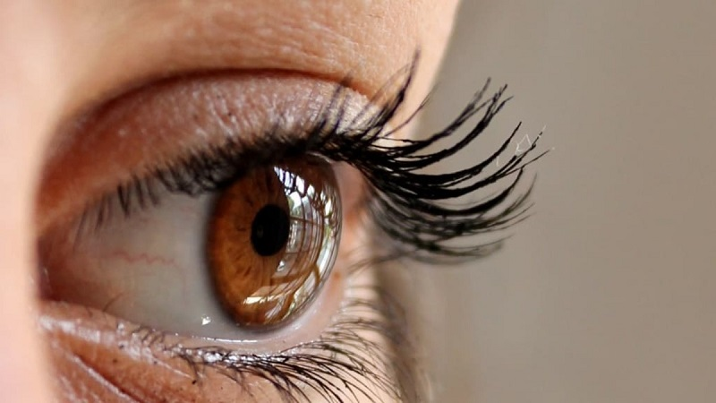 Seven Things to Avoid When You Have Lash Extensions