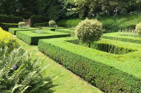 Advantages of Yard Upkeep to Your Home Outdoor