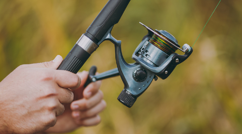 How to Maintain Your Fishing Reels and Rods Properly?