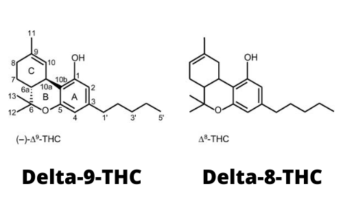 How Is Delta 8 THC Different From Delta 9?