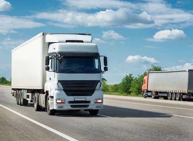 Insight into Dairy Logistics