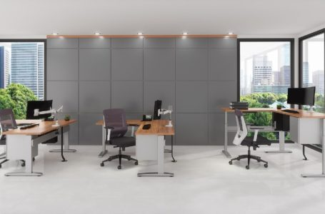 Preventive tips to maintain your adjustable desk frames:
