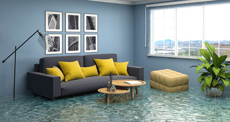 How to Choose the Right Water Damage Restoration Company