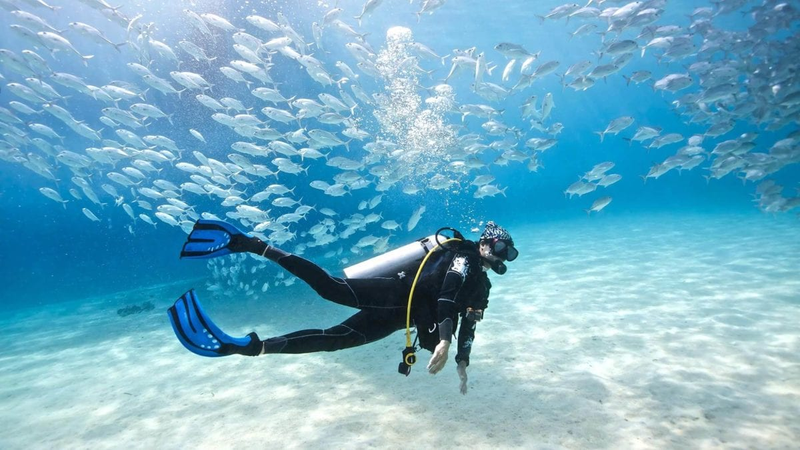 Get the Best Quality Under Water Diving Lessons at Hurghada Diving School