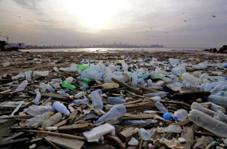 Understanding that Plastic Is Not Our Worst Enemy
