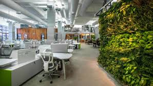 Why You Should Consider Renovating Your Office