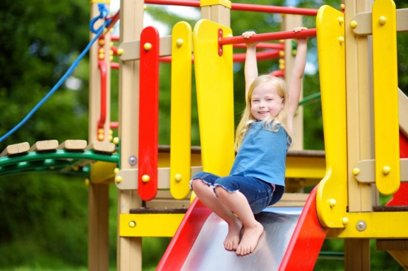 Will Inspire Play Playground Sets Rule the World?